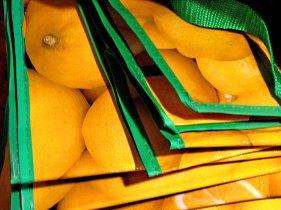 Fotokunst Konstanz: Schnappschuss - farbige Einkaufstaschen aus Plastik